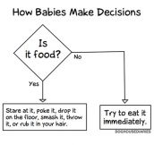 How Babies Make Decisions