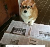 Just Checking The News