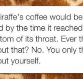 Interesting Giraffe Fact