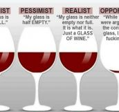 Which Glass Would You Choose?