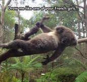 Koala's Seductive Pose