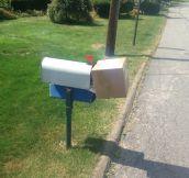 Bravo Mailman