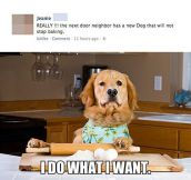 The Dog Who Won't Stop Baking
