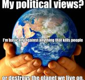 Political Views
