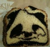 This inbred Panda looks so baked