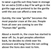 So A Gorilla Dies Of Old Age At A Zoo…What This Zoo Did Next Is Genius.