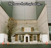 The Original Up House