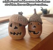 Jack-O-Acorns