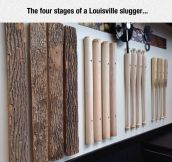 The Four Stages Of Baseball Bats
