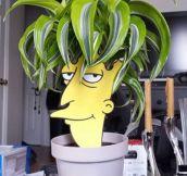 Hello, Bart