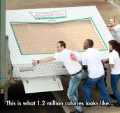 Giant Box Of Krispy Kreme