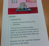 Pusheen The Cat Doing Some Chemistry