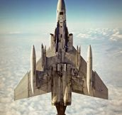 F4 Phantom Rising