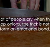 It's Only An Onion