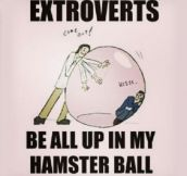Introverts Will Relate