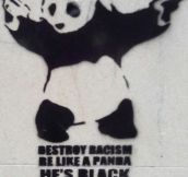 Pandas Are The Best Example Of Inclusion