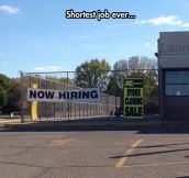 Look They're Hiring, Oh