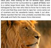Lions Save Kidnapped Girl