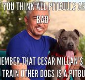 Remember Cesar Millan's Dog