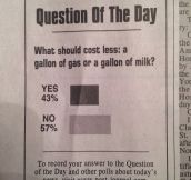 The Question Of The Day