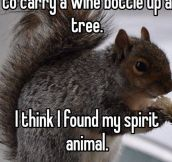 Squirrel With A Wine Bottle