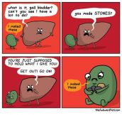 You Had One Job, Gallbladder