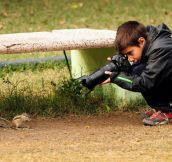 9 year-old Spanish boy becomes young wildlife photographer of the year by the National History Museum, London