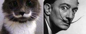 18 Cats That Resemble Something Else