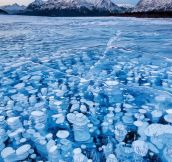 Amazing Frozen Lake Beauty