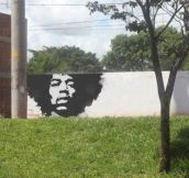 Jimmy Hendrix Green Grafitti