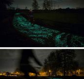 Beautiful Glowing Bicycle Path