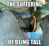 Tall Guys Understand