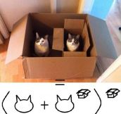 Mathematical Formula Of Cats And Boxes