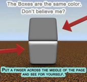 Incredible Color Box Illusion