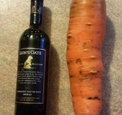 Now That Is A Carrot