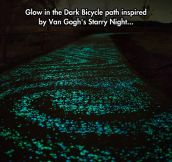 Starry Bicycle Path