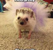 Cute Little Tutu Skirt