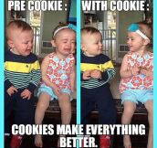 Cookies Can Fix Everything
