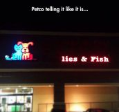 Petco's New Slogan
