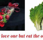 Poor Little Lettuce
