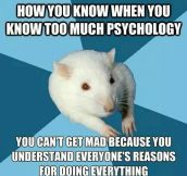 The First Psychologist Problem