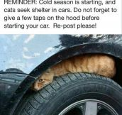 A Simple Reminder For Cold Days