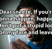 Letter To My Sneeze
