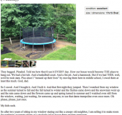 24 Hilariously Bizarre Craigslist Ads…