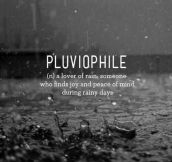 Who Else Finds The Sound Of Rain Charming?