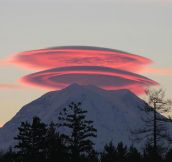 Lenticular Clouds Over Mount Rainer