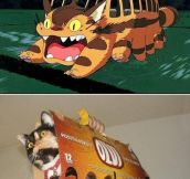 Cat Bus Cosplay