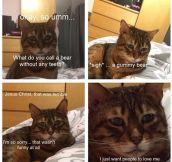 World's Saddest Cat Tells A Joke