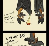 Fruit Bats Pun