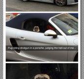 Where's Your Porsche?